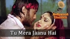 Tu Mera Jaanu Hai - Laxmikant-Pyarelal's Best Romantic Hit Song - Hero