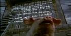 Hayvan Çiftliği, George Orwell, Animal Farm