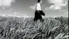 Black Wonderful Life HD Widescreen 16:9