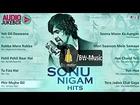 Sonu Nigam Hits - Audio Songs Packet (Jukebox) - BW-Music